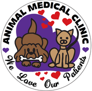 Animal Medical Clinic - Veterinarian in {CITY}, {STATE}